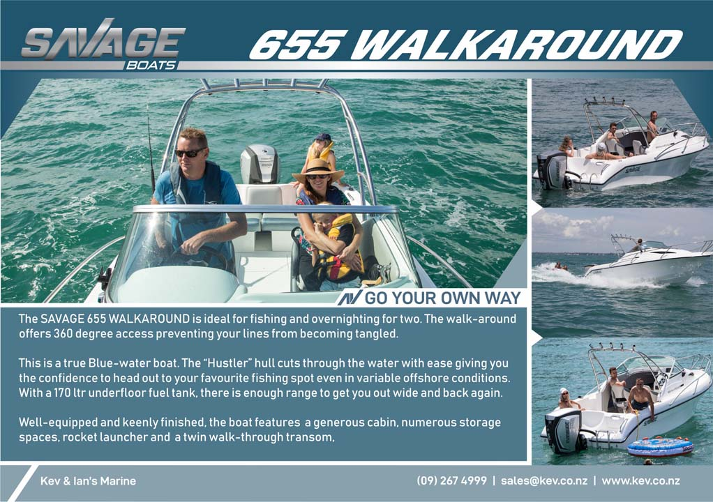 655 Walkaround brochure